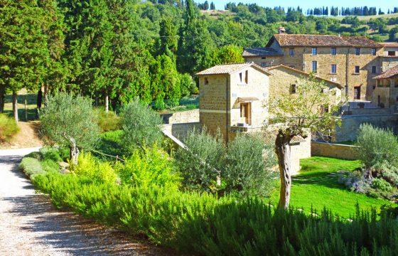 Borgo di Toppo – økologisk vingård ved Citta del Castello, Umbrien