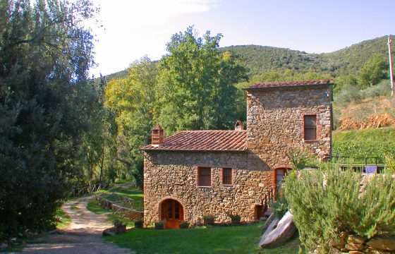 Privat villa i Brunello-land: Montalcino